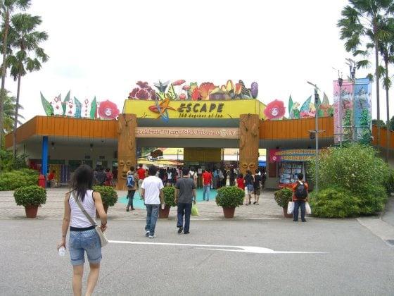 escape-theme-park