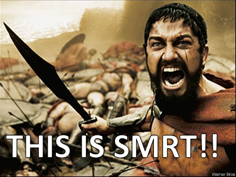 THIS IS SMRT