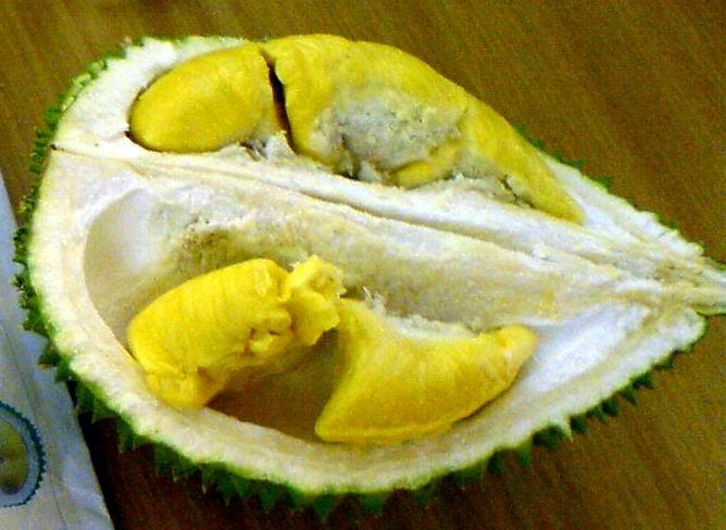 Durian_Pulp_2a