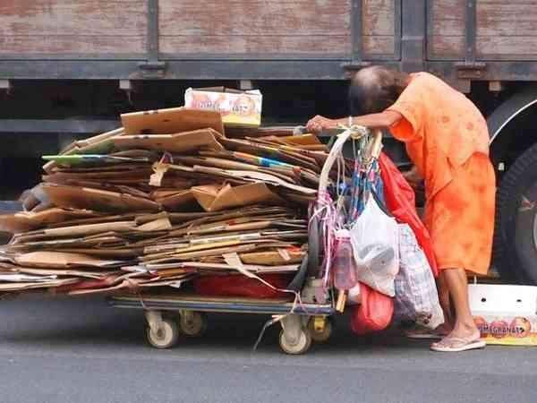 cardboard-collector-auntie-environment_3
