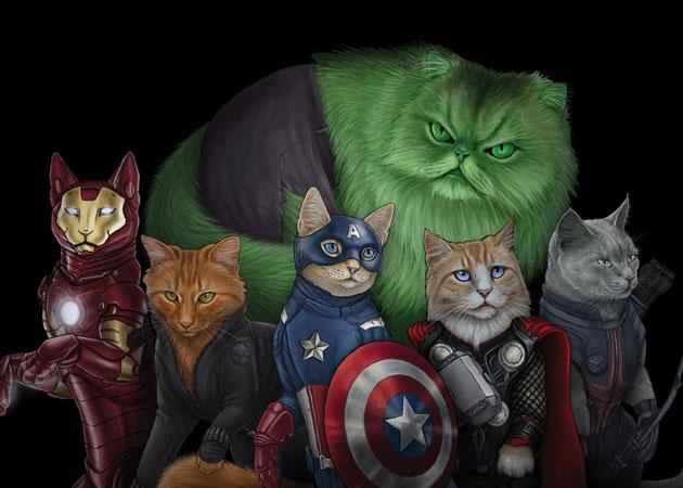hero cats