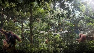 mandai eco-tourism park