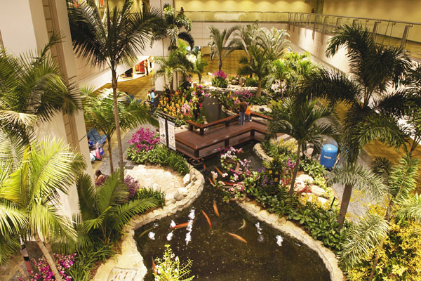 butterfly garden changi airport best
