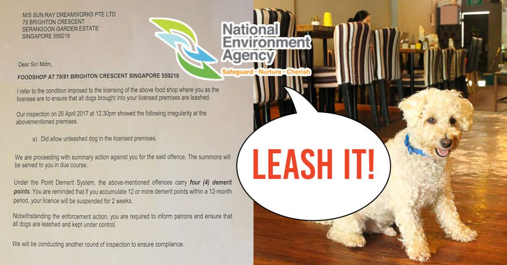 Pet Cafe Dogfight Prompts Entitled Owner To Complain To The