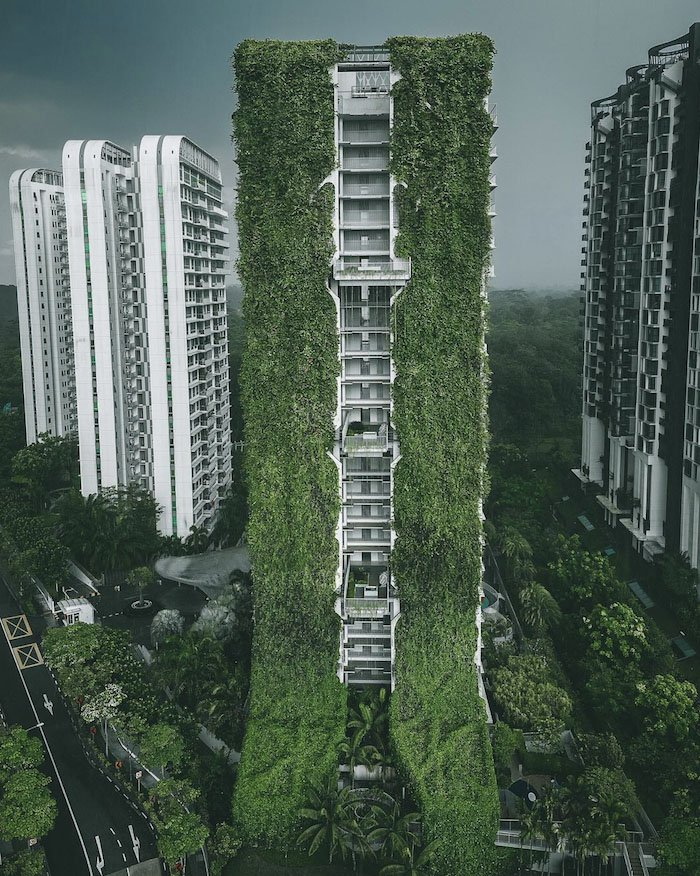 The Tree House in Bukit Panjang
