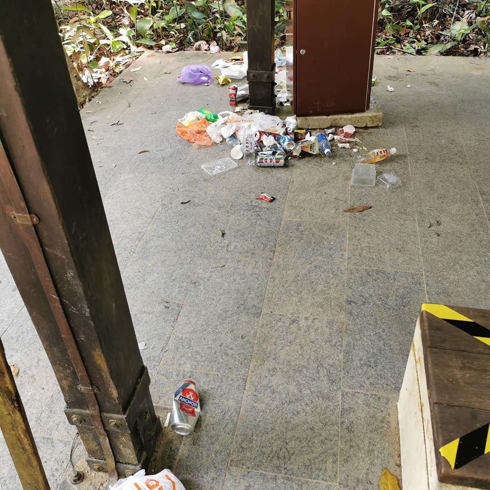 MacRitchie Reservoir trash 2
