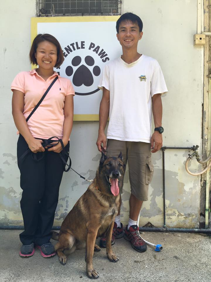 ex-police dog