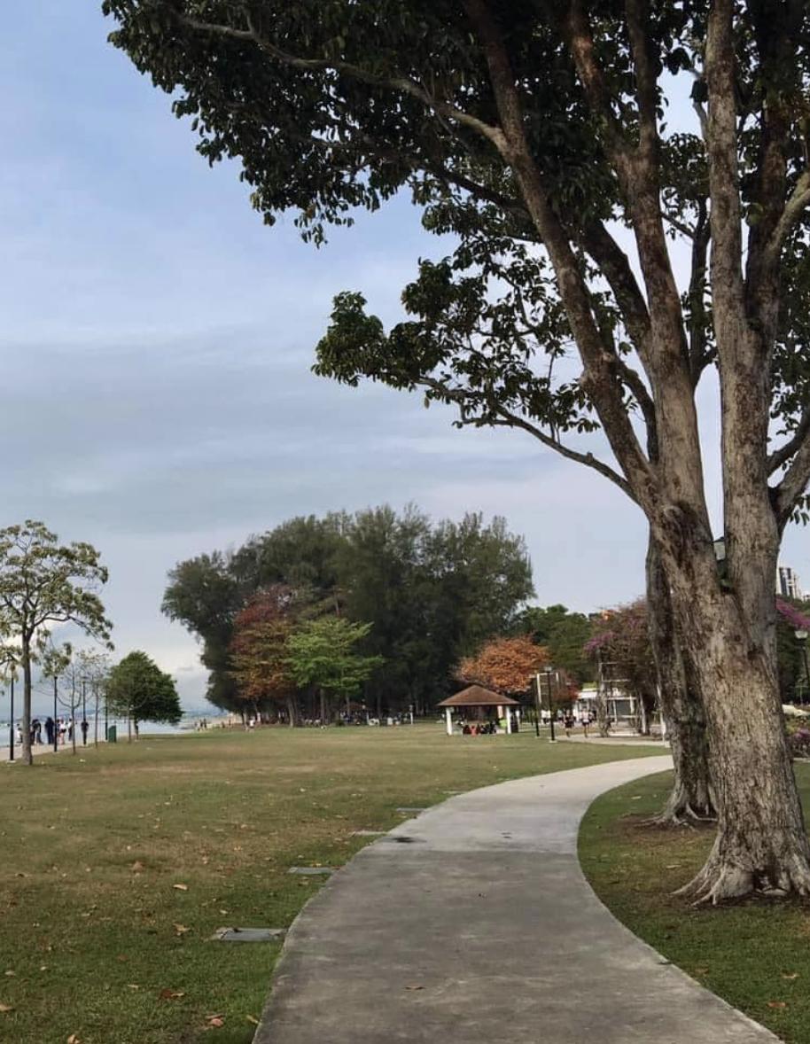 Autumn East Coast Park