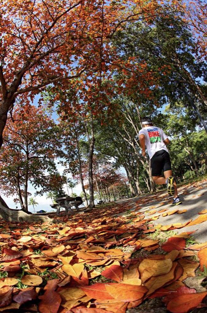 Jogging and brown leaves