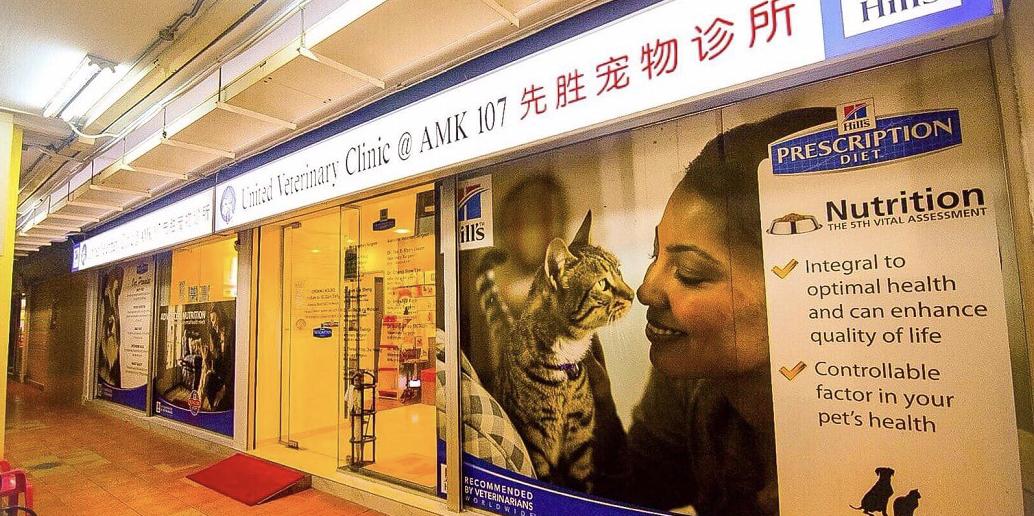 United veterinary clinic
