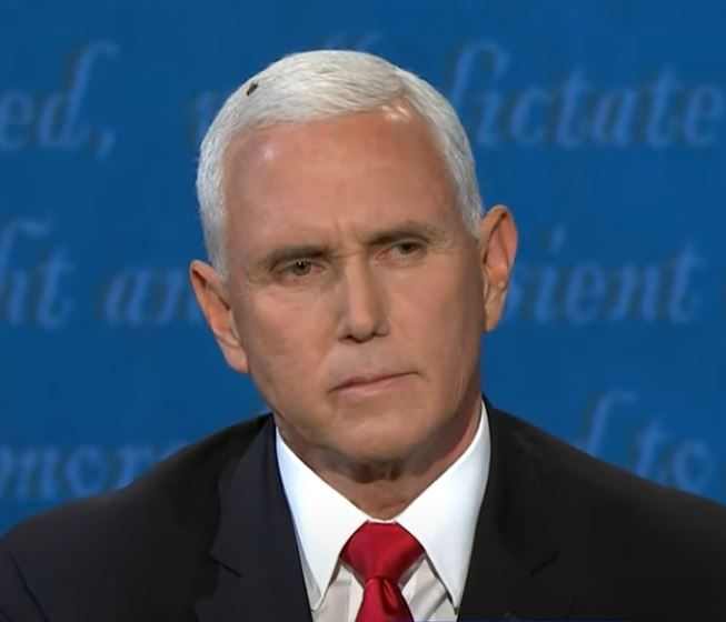 Fly Lepaks On Mike Pence's Hair During US Debate, Biden ...
