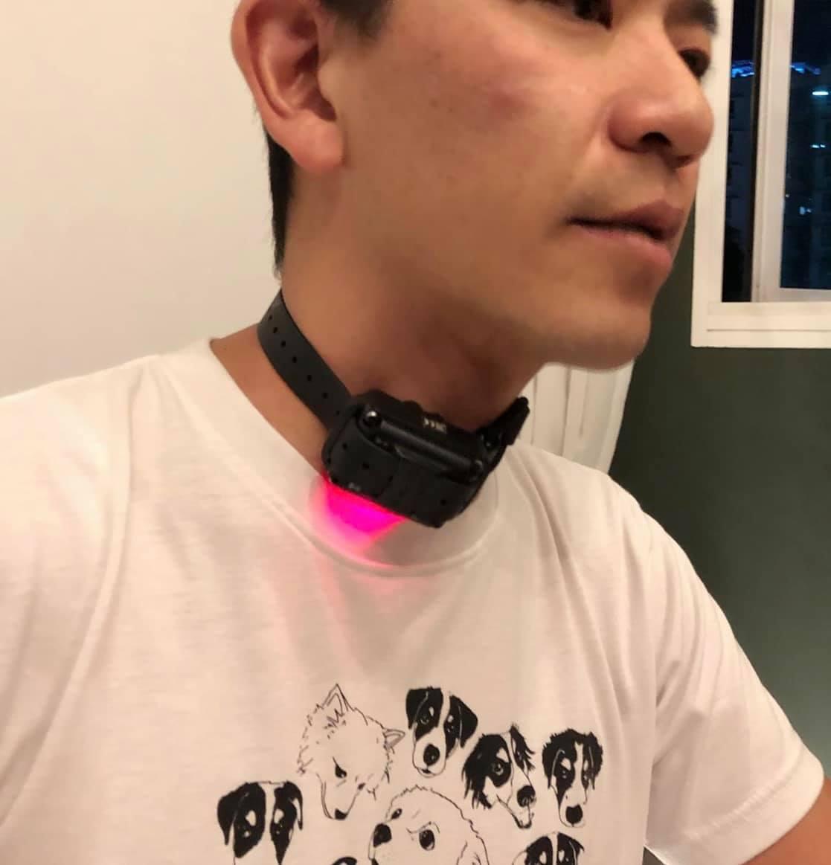 prong shock collars