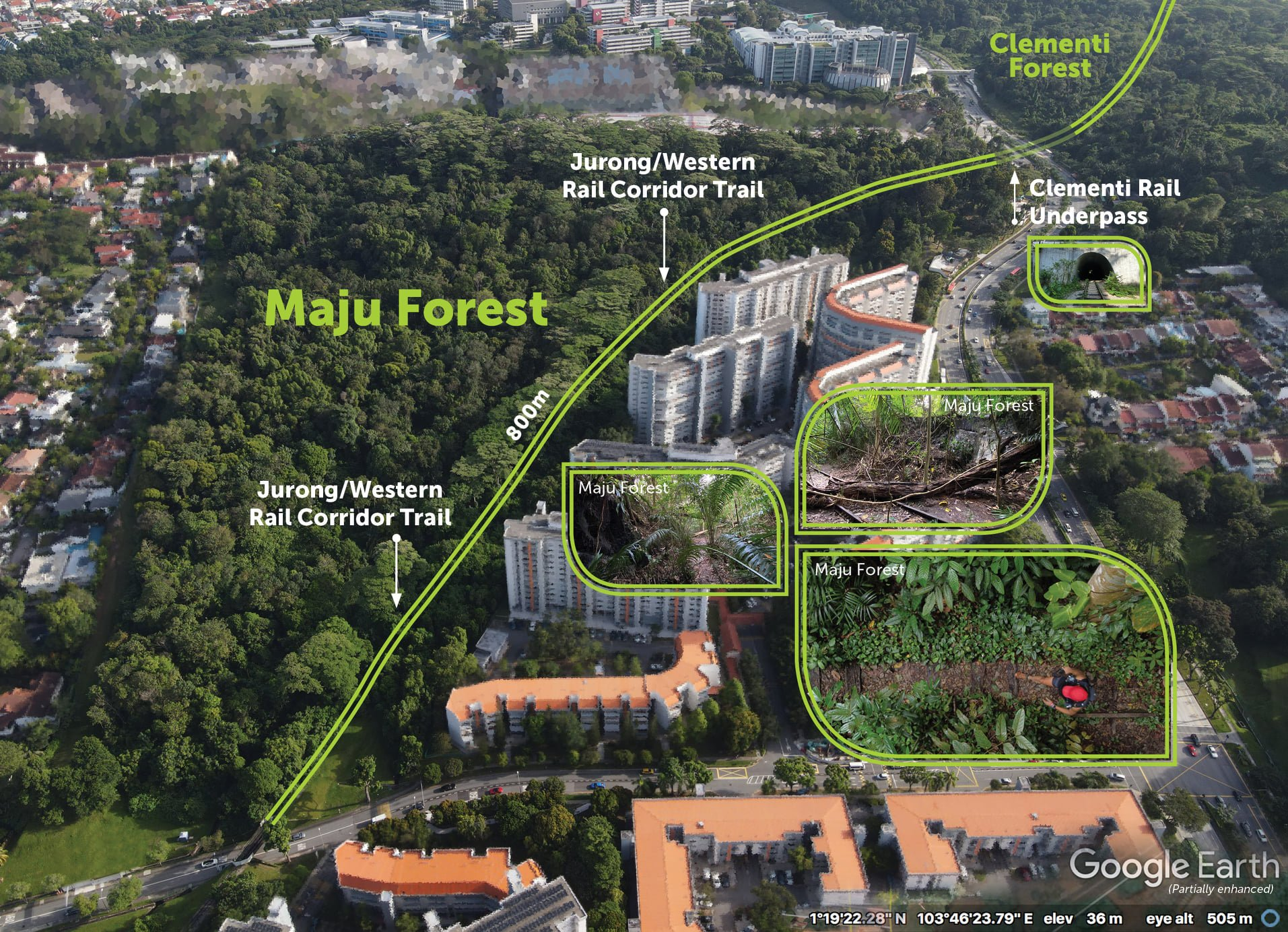Clementi Forest proposal