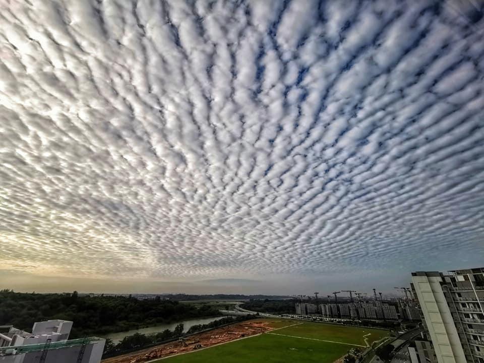 fluffy clouds altocumulus
