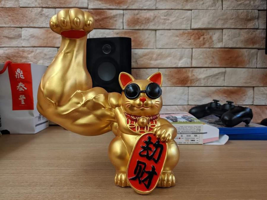 Image result for muscular cat cny