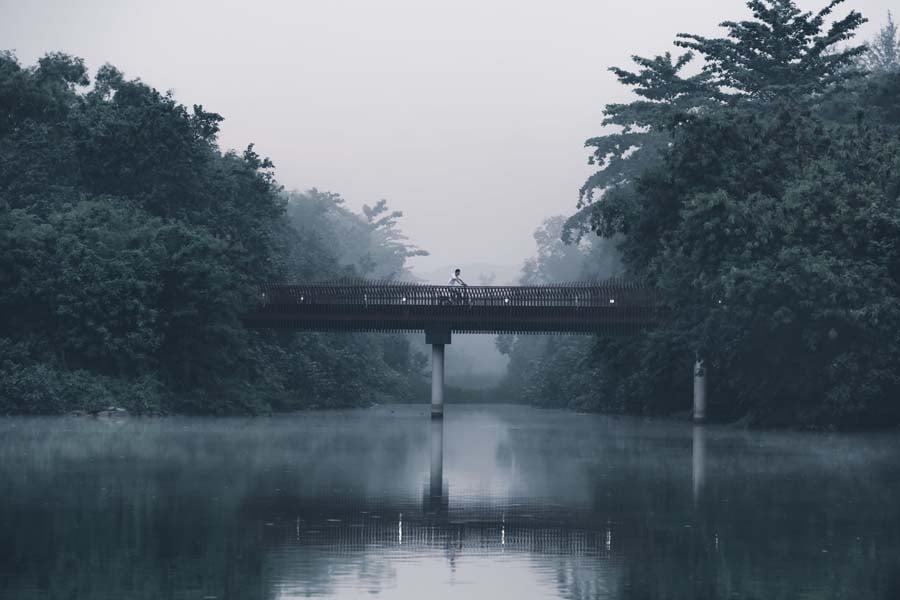 misty landscapes 1