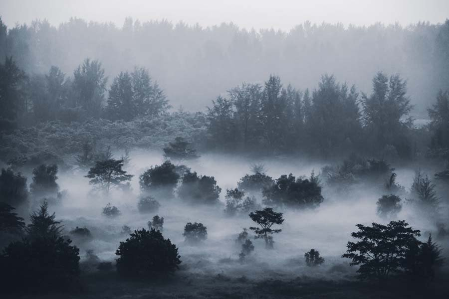 misty landscapes 3